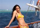 最近迷上印度电影了:风筝